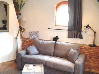 Studio typique Toulousain Capitole **