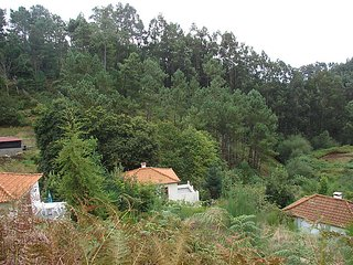 1 bedroom Villa in Camacha, Autonomous Region of Madeira, Portugal : ref 5081837