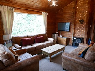 Living room with new leather sofas, large TV, stove-style electric heater and picture frame windows.