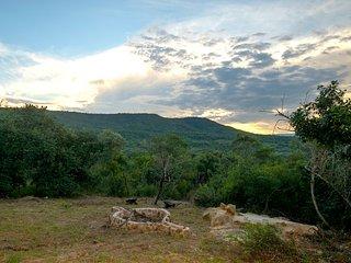 Kruger Park - Pieter Lodge