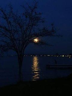 A blue night moon