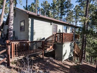 Pinecone Cabin, 1 Bedroom, Hot Tub, Fireplace, Flat Screen TV, Sleeps 4 - Cabin