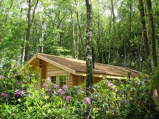 Hedgehog Lodge - Secluded Log Cabin with access to seasonal pool