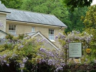 Magnolia House 1