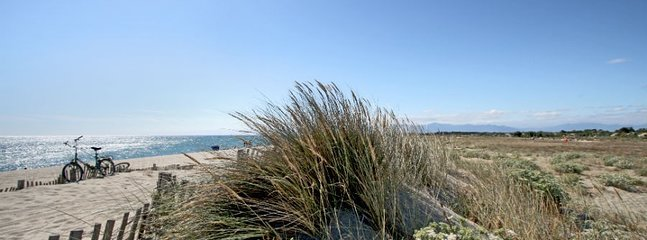 Wilde beach lands
