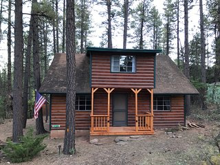 Cool Pines Rustic Cabin Getaway