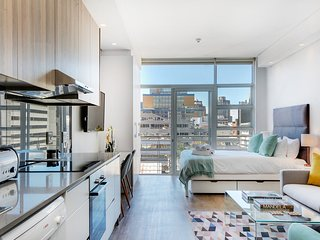 Luxury New York City Style Apartment near Table Mountain