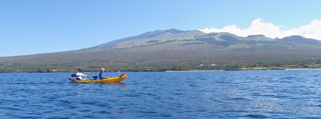 Guided sea kayak tours available.