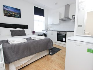 Amazing Renovated Studio Sleeps 2 in NW London TR4