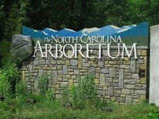 The North Carolina Arboretum é um lugar maravilhoso para descobrir flora nativas da região.