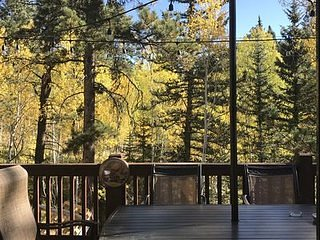 Magical Forest Cabin 1BR