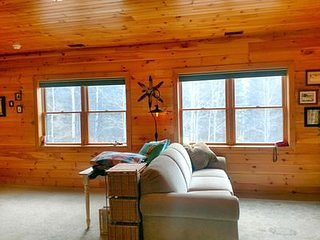 Magical Forest Cabin 4BR Divide CO
