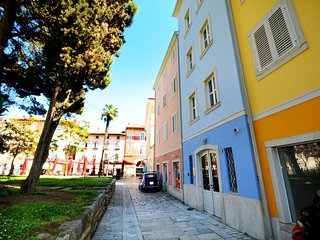Luxurious apartment Zudetici