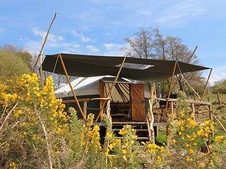 Gorse Yurt