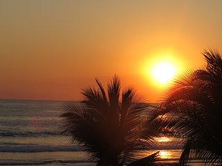 Dos Palmas - Oceanfront