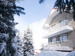 Mountains House in Shymbulak (4 bedrooms)