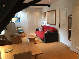 Charming 1 bedroom apartment in Dinan (A007)