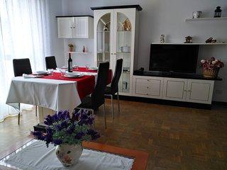 Amplio apartamento en Villavivciosa para disfrutar unos días de vacaciones.