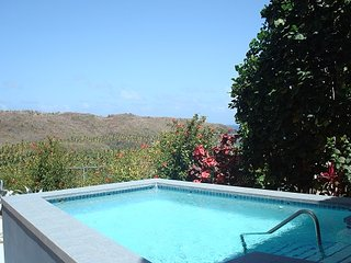 Luxury Villa Near Vieux Fort; 2 pools, private beach, nearby waterfall