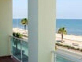 Pisos en Alquiler en Primera Linea de Playa