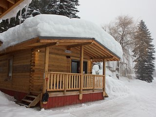 Log Cabin with Hot-Tub