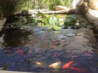 Fish pond at entrance.