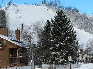 Schuss Village condo close to golf, pool, slopes