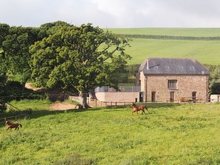 SWALLOWS REACH, large, converted barn sleeping 18, with indoor swimming pool, ga