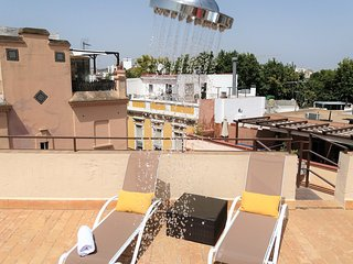 Sunny Penthouse with 2 Terraces, Center of Seville