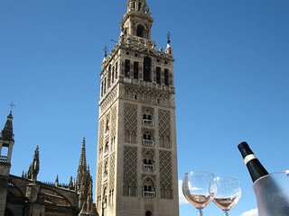 Super Central, Next to la Giralda, Shared Terrace with Stunning Views