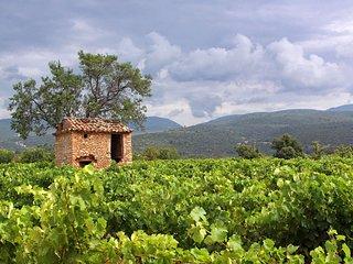 Une échappée au cœur des vignes du Luberon