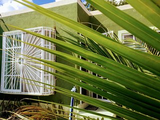 CASA MALIX, una increíble experiencia entre una Playa Virgen y La Jungla Maya