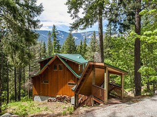 Timber View Lodge - Cabin