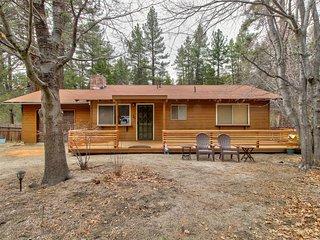 Dog-friendly cabin in the woods w/ enclosed yard, creek access, & mountain views
