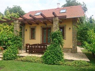 Modern eingerichtetes, klimatisiertes, exlusives Ferienhaus am Velence-See