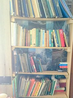 Guides, novels, and children's books galore.