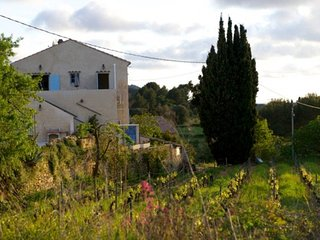 Apartment on a vineyard in Provence: village, country- and beachlife