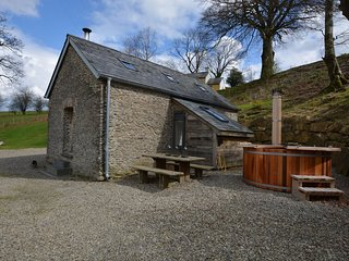 41174 Barn situated in Lampeter (3mls W)