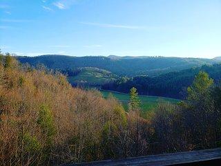 Rhys' River Valley