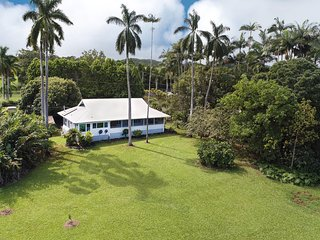 My Hilo Home