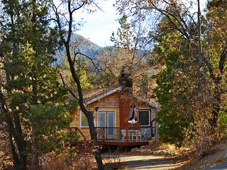 Romantic cabin in woodsy area, 2 miles from skiing