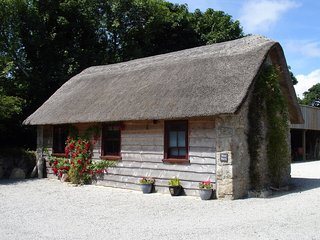 WEST BARN, adorable, thatched pet friendly barn in quiet village location. Praze
