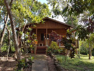 Hibiscus dormitory cabana in jungle