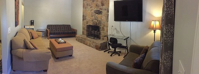 Spacious family/living room area.  Sleeps 5 people with Futon, and 2 pull out sofas
