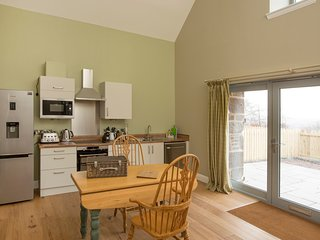 Well equipped kitchen with induction hob, oven, microwave and dishwasher