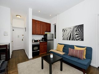 Stylish modern alphabet city one bedroom apartment