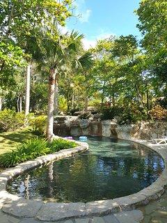 Beach  club swimming pool.