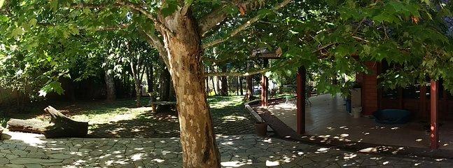 La zona está vigilada por un árbol enorme que ayuda a energizar el lugar y le da la bienvenida!