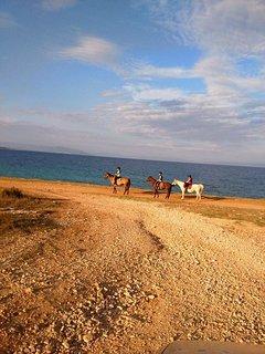 riding along the Ližnjan coast