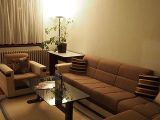 Cozy L&E apartment